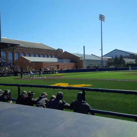 Michigan was unable to defend its home turf Tuesday, falling to Bowling Green, 7-4.